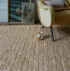 Natural Rugs Sisal Coir Seagrass Jute The Rug