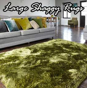 Large Shaggy