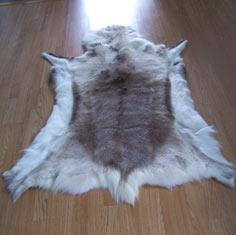 Reindeer Skin Rugs